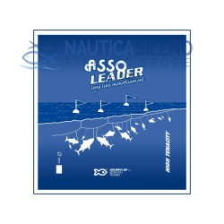 Asso Leader